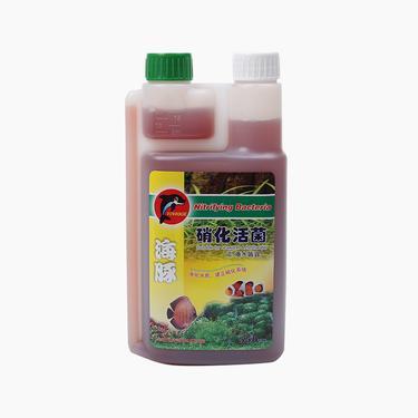 海豚 硝化活菌剂 超浓缩活性硝化细菌