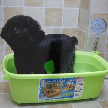 爱丽思IRIS 宠物浴盆  小型犬洗澡盆 小图 (0)