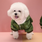 伊丽 蜥蜴变装狗衣服可爱秋冬双脚装泰迪比熊博美  时尚出街 俏皮可爱
